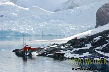 Top best things you need to know about Antarctica